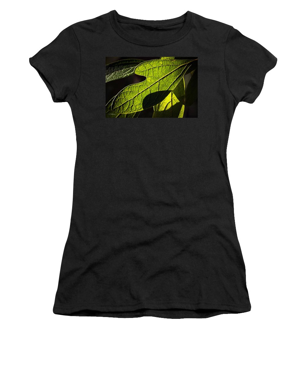 Leaf Women's T-Shirt (Athletic Fit) featuring the photograph Textured Glow by Christopher Holmes
