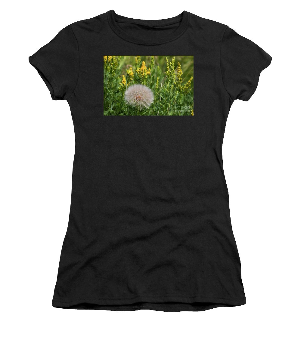 Yellow Flowers Women's T-Shirt featuring the photograph The Dandelion by Brandon Bonafede