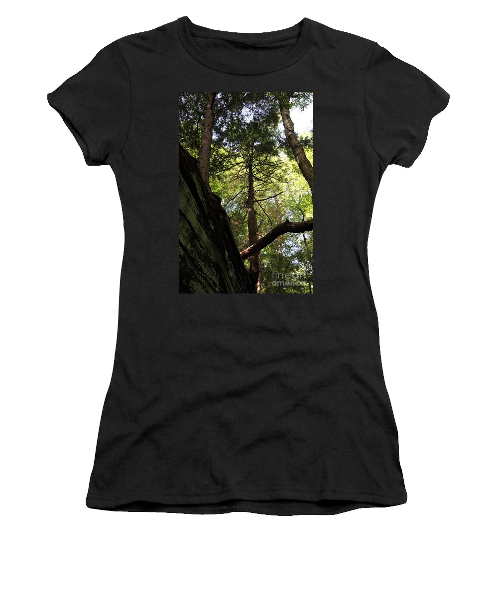 Tree Women's T-Shirt featuring the photograph The Fallen Triangle by Amanda Barcon
