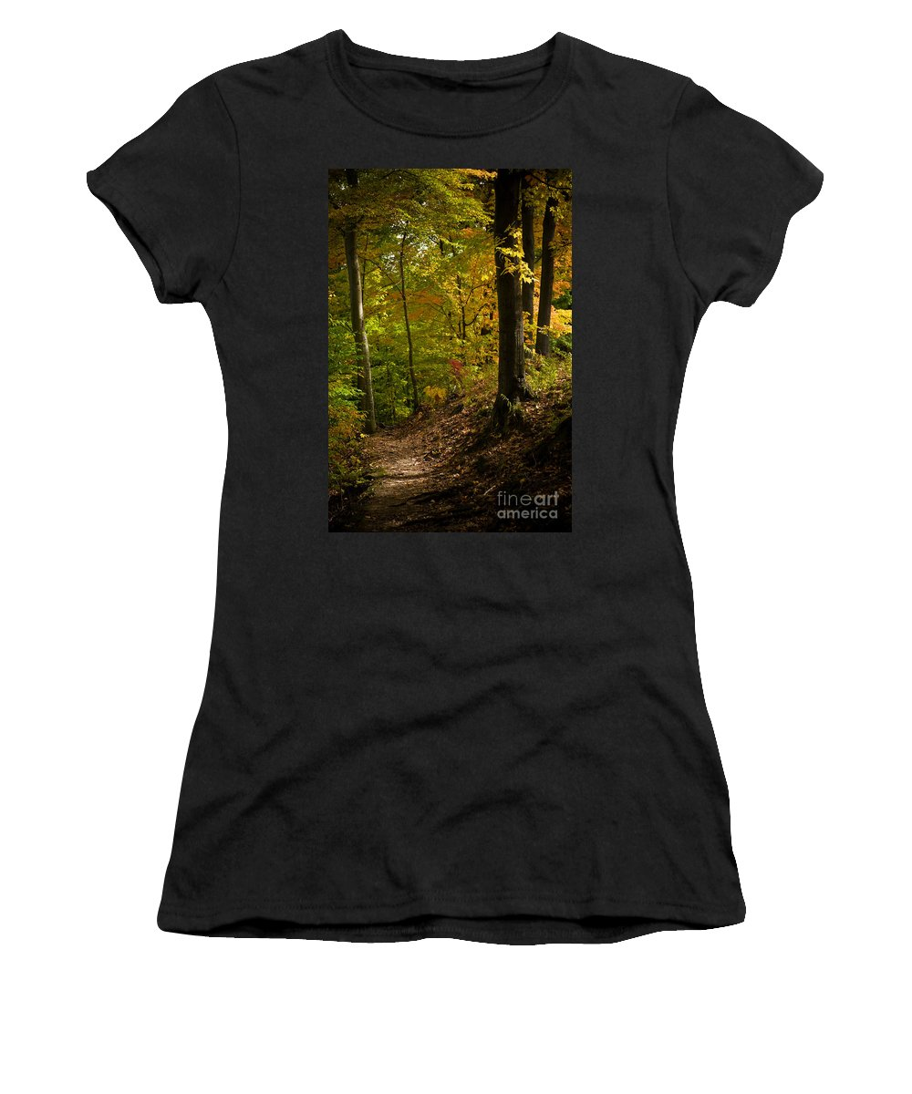 Forest Women's T-Shirt featuring the photograph The Light Shows The Way by Tony Bazidlo