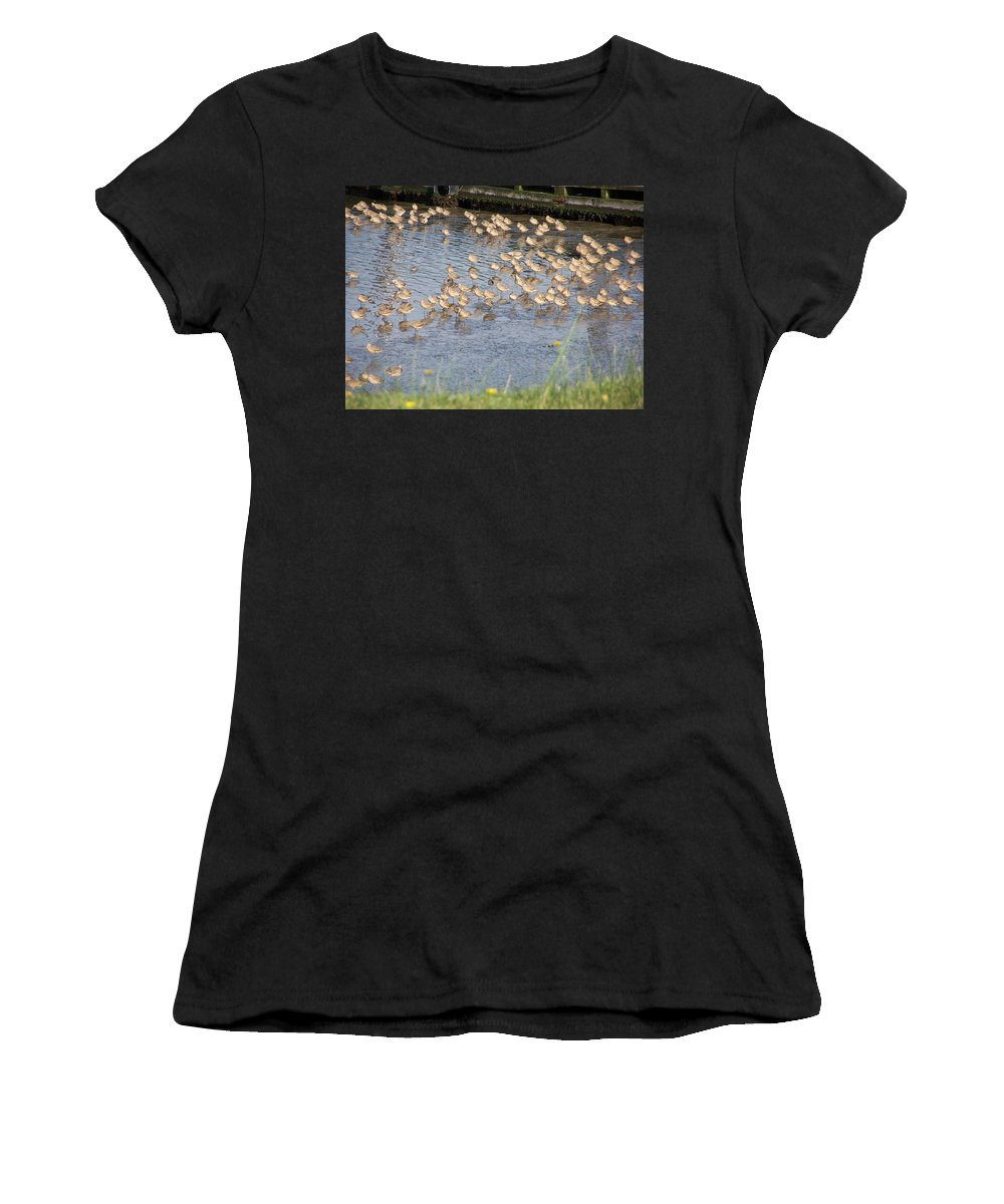 Seabirds Women's T-Shirt (Athletic Fit) featuring the photograph The Plovers by Laurie Kidd