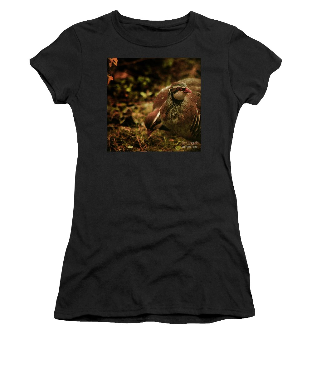 Partridge Women's T-Shirt (Athletic Fit) featuring the photograph The Redlegged Partridges by Angel Ciesniarska