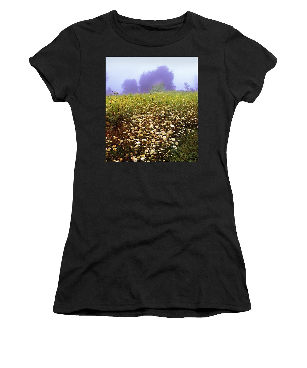 New York State Women's T-Shirt featuring the photograph The Secret Garden by Yuri Lev