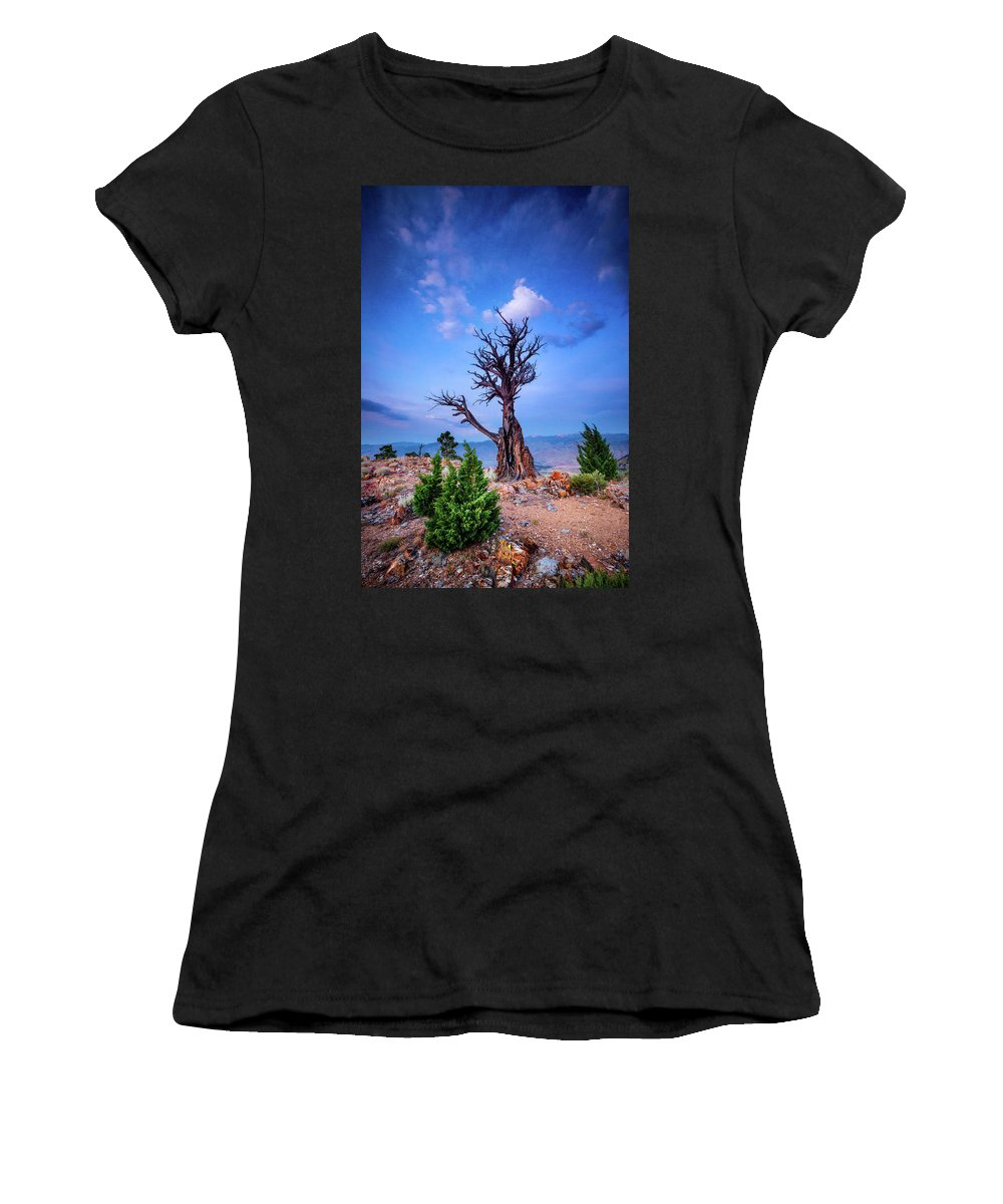 Holmes County Women's T-Shirts