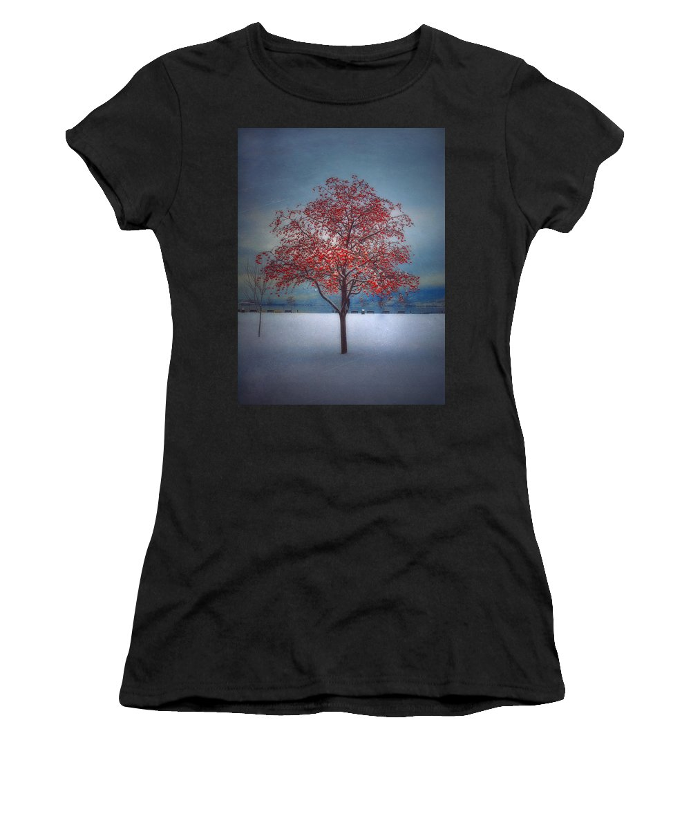 Tree Women's T-Shirt (Athletic Fit) featuring the photograph The Winter Berries by Tara Turner