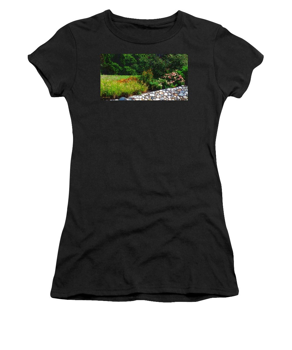 Connecticut Women's T-Shirt featuring the painting These Are A Few Of My Favorite Things by RC DeWinter