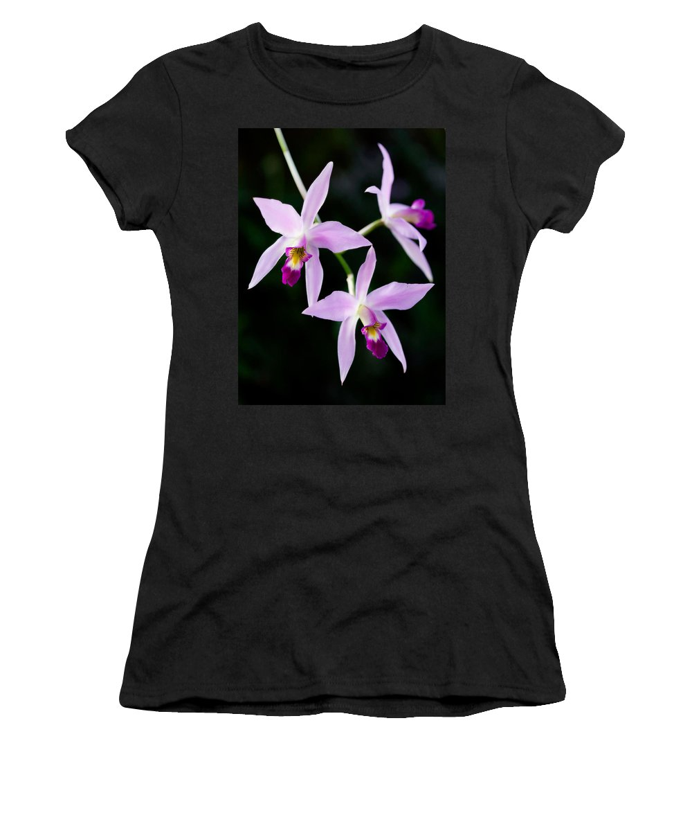 Orchid Women's T-Shirt (Athletic Fit) featuring the photograph Three Orchids by Marilyn Hunt
