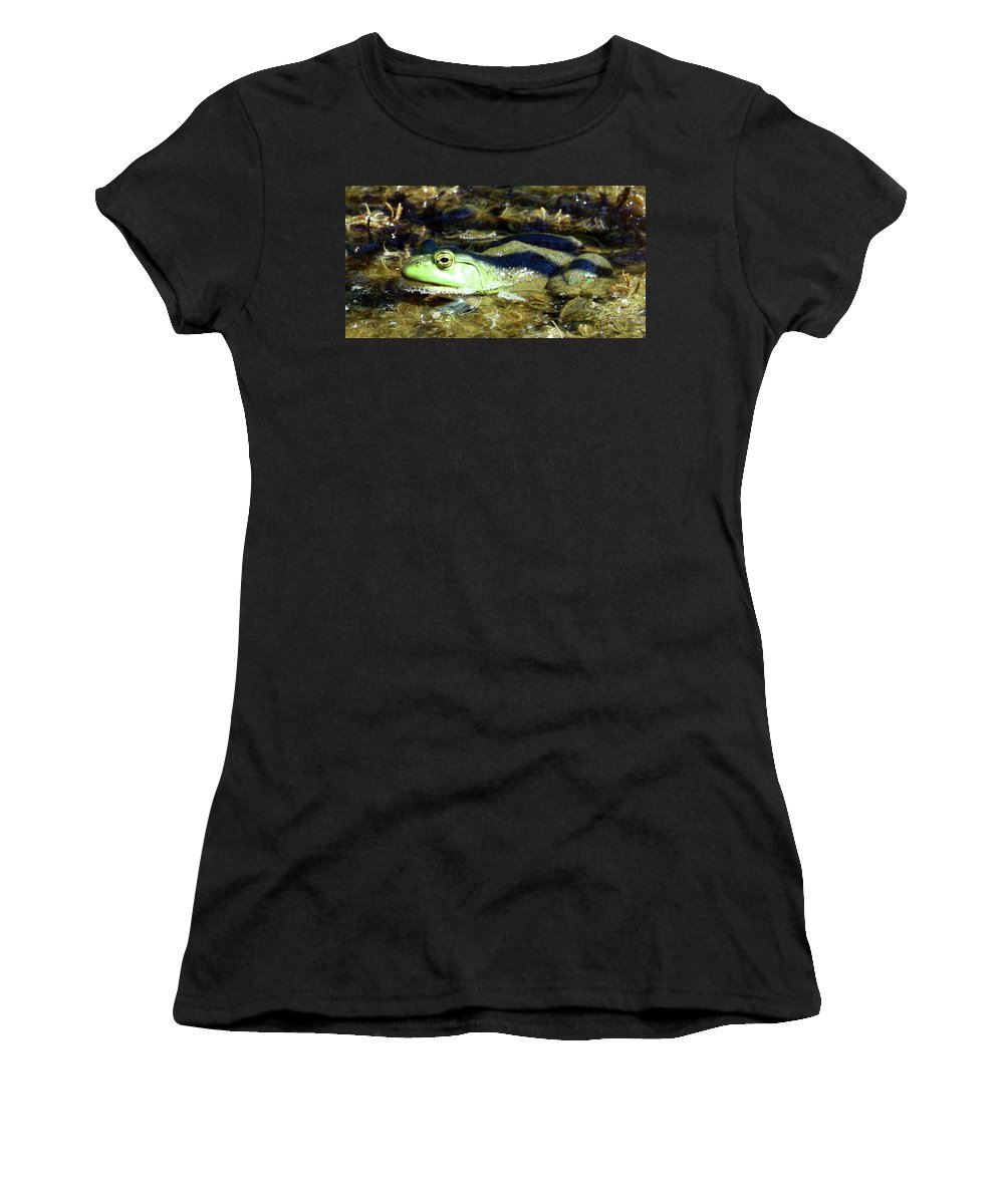 Mink Frog Women's T-Shirt (Athletic Fit) featuring the photograph Time To Drain The Swamp by Sally Sperry