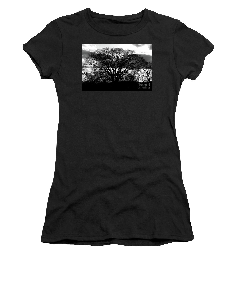 Tree Women's T-Shirt (Athletic Fit) featuring the photograph Tree by Douglas Stucky