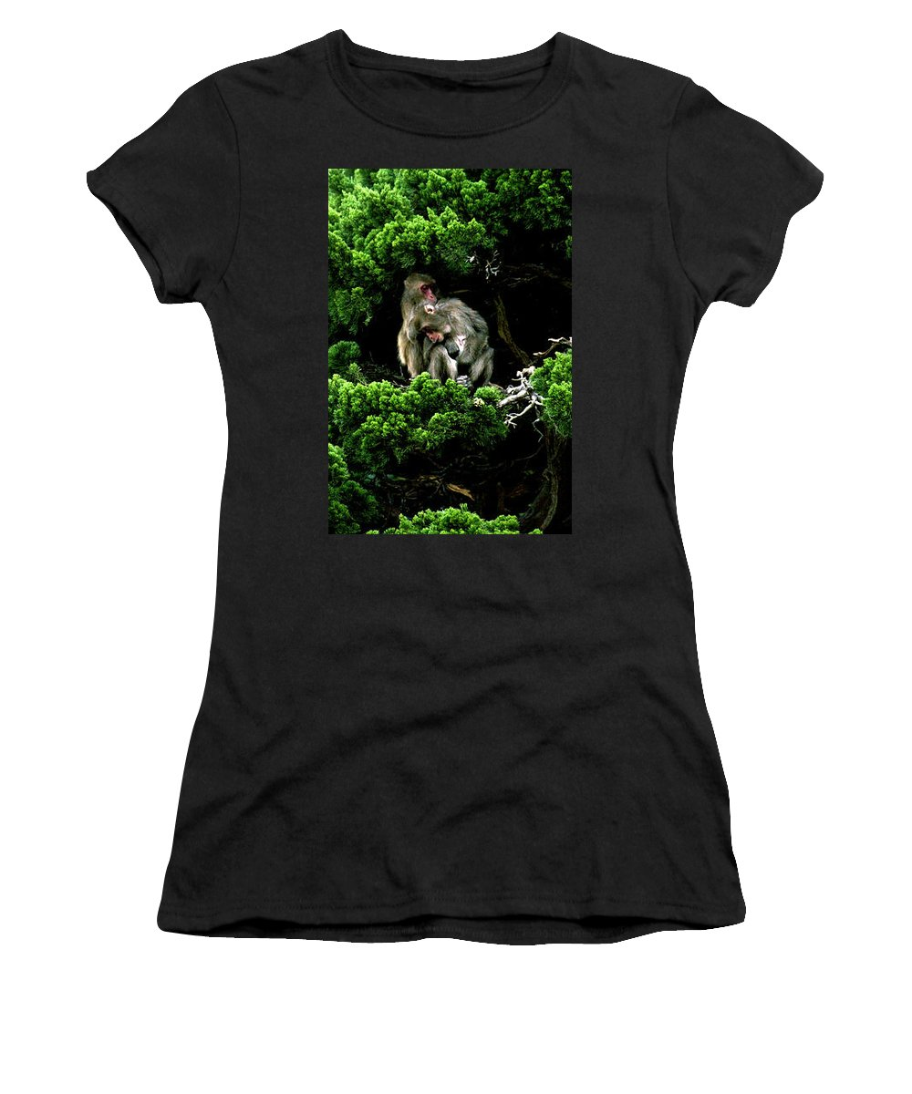 Trees Women's T-Shirt (Athletic Fit) featuring the photograph Trees In Japan 10 by George Cabig
