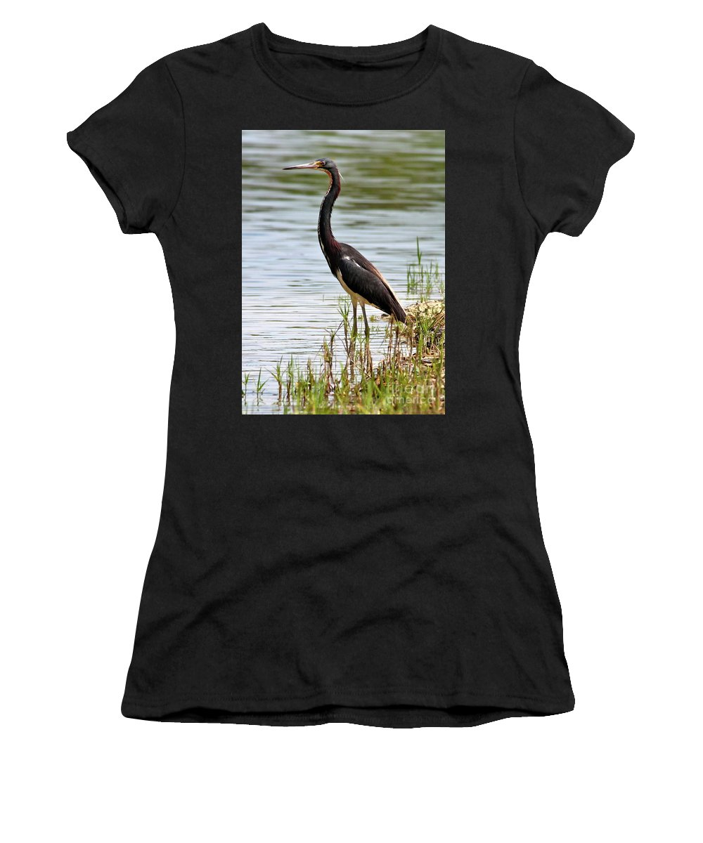 Bird Women's T-Shirt featuring the photograph Tricolored Heron by Carol Groenen