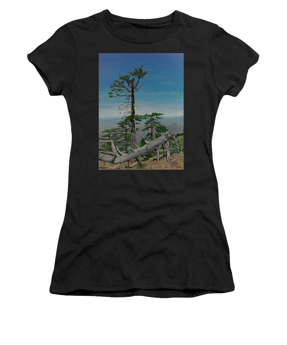 Troodos Mountains Women's T-Shirt featuring the painting Troodos Mountain by Paul Gibbins