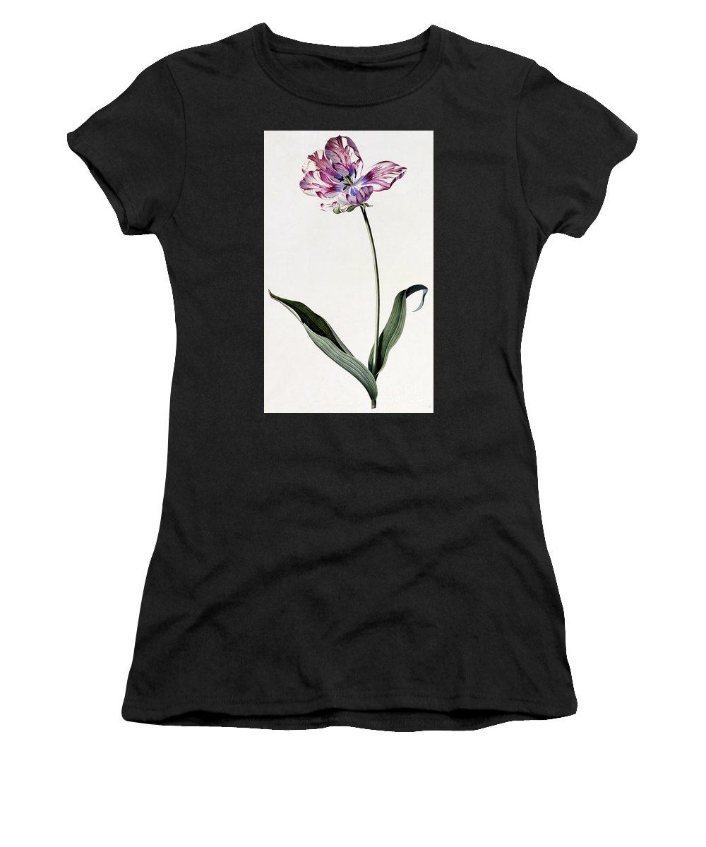 Ehret Women's T-Shirt (Athletic Fit) featuring the painting Tulip by Georg Dionysius Ehret