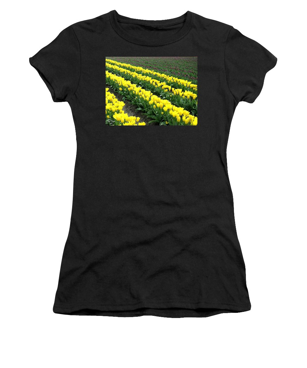 Agriculture Women's T-Shirt (Athletic Fit) featuring the photograph Tulip Town 9 by Will Borden