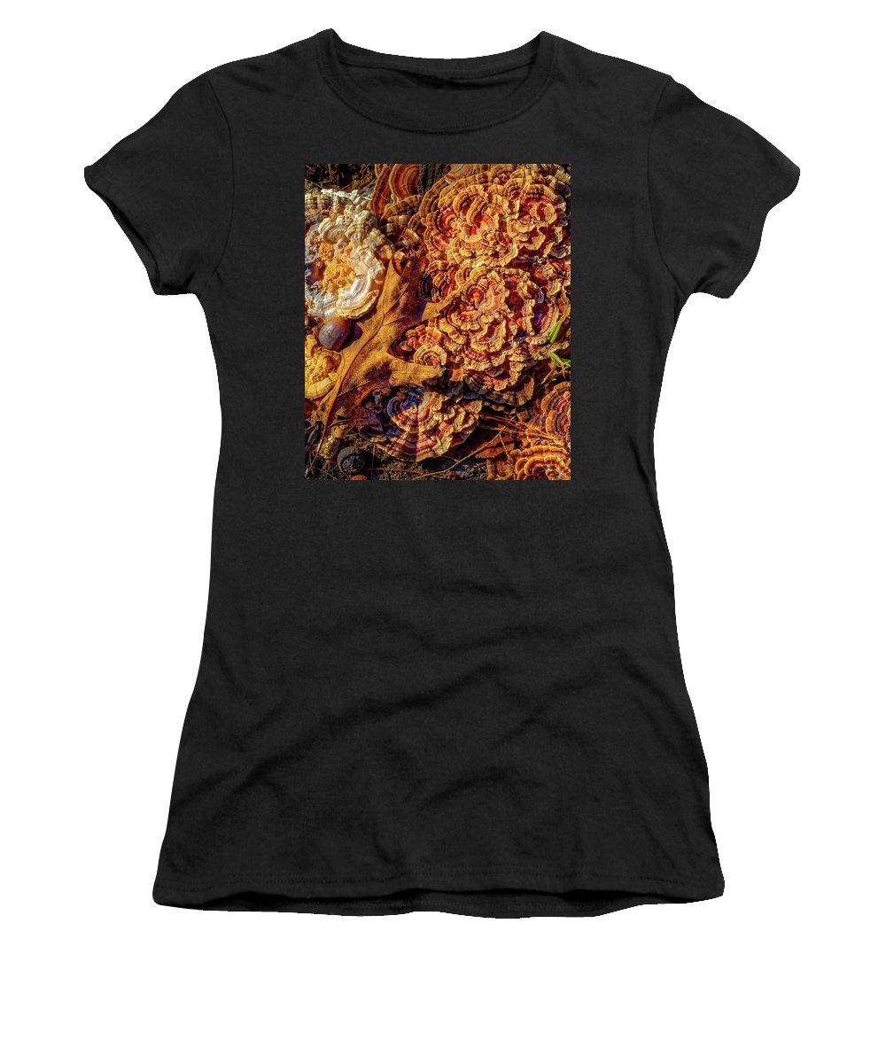 Mushroom Women's T-Shirt featuring the photograph Turkey Tail Mushrooms by Bob Orsillo