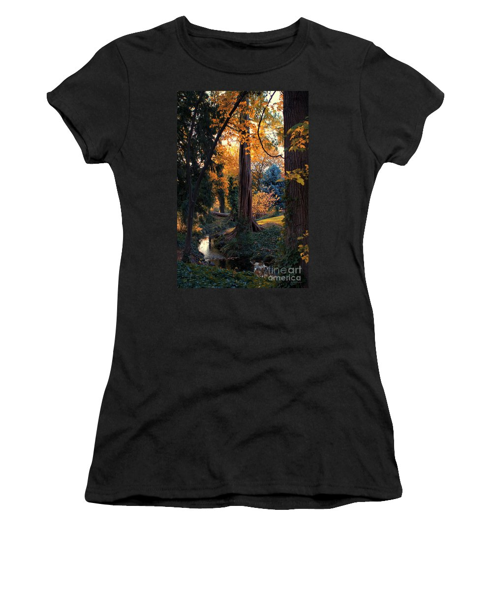 Tree Women's T-Shirt (Athletic Fit) featuring the photograph Turning Of The Leaves by Karen Goodwin