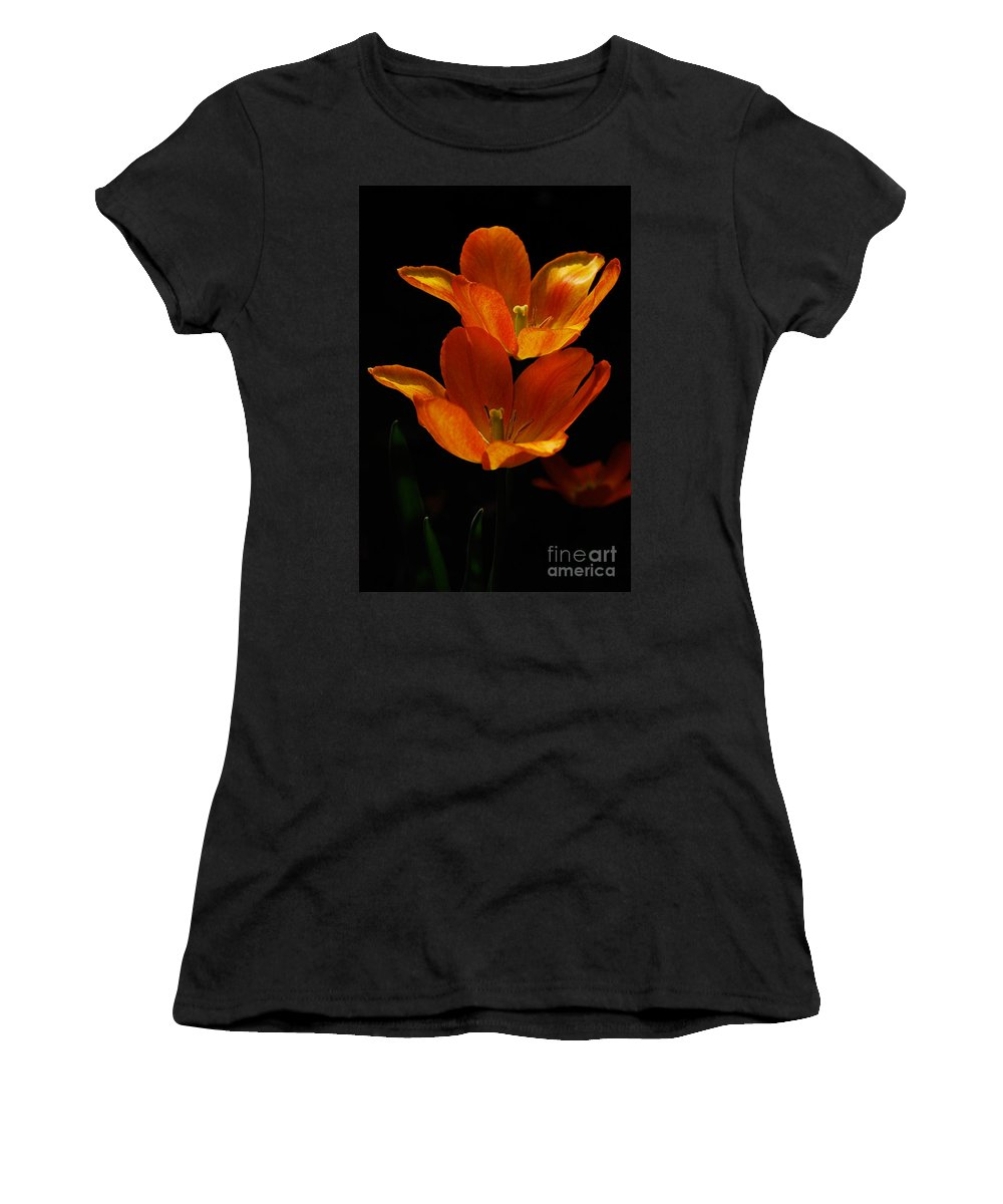Lois Bryan Women's T-Shirt (Athletic Fit) featuring the photograph Twins by Lois Bryan