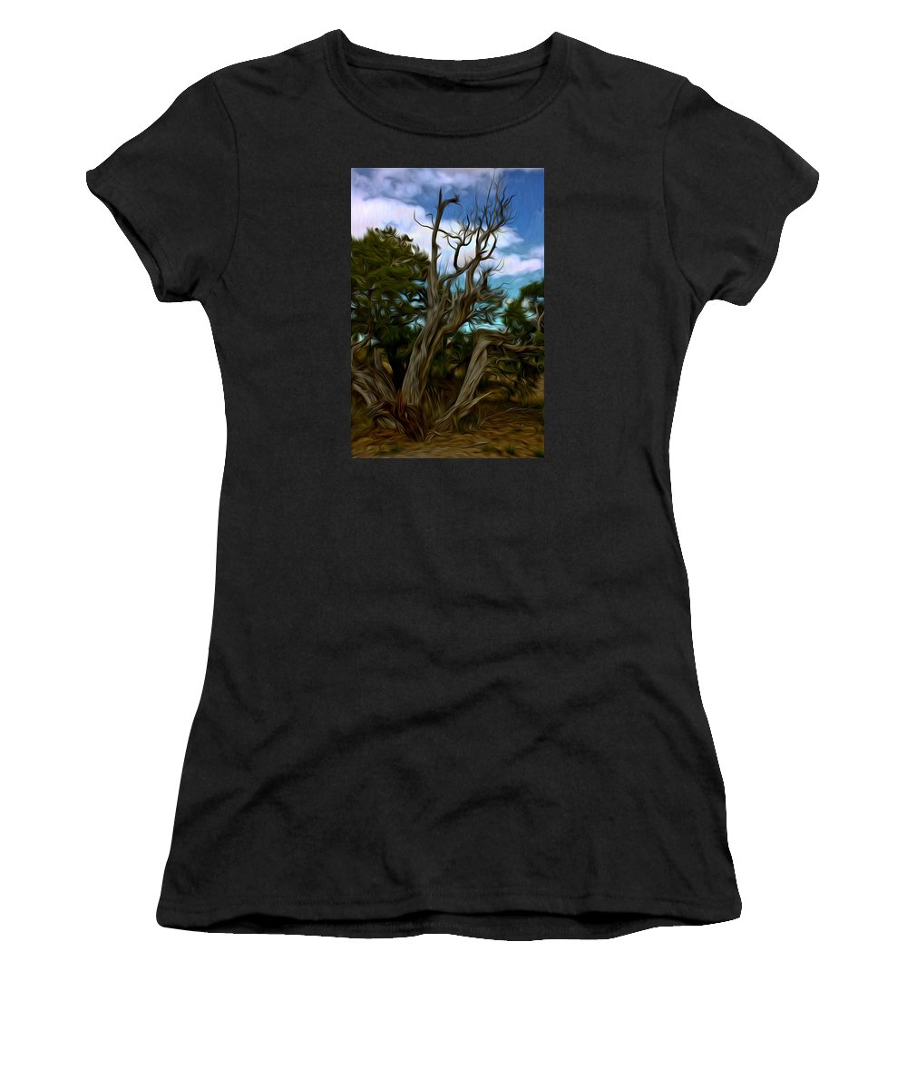 Bristlecone Women's T-Shirt (Athletic Fit) featuring the photograph Twists In Color by David Kehrli