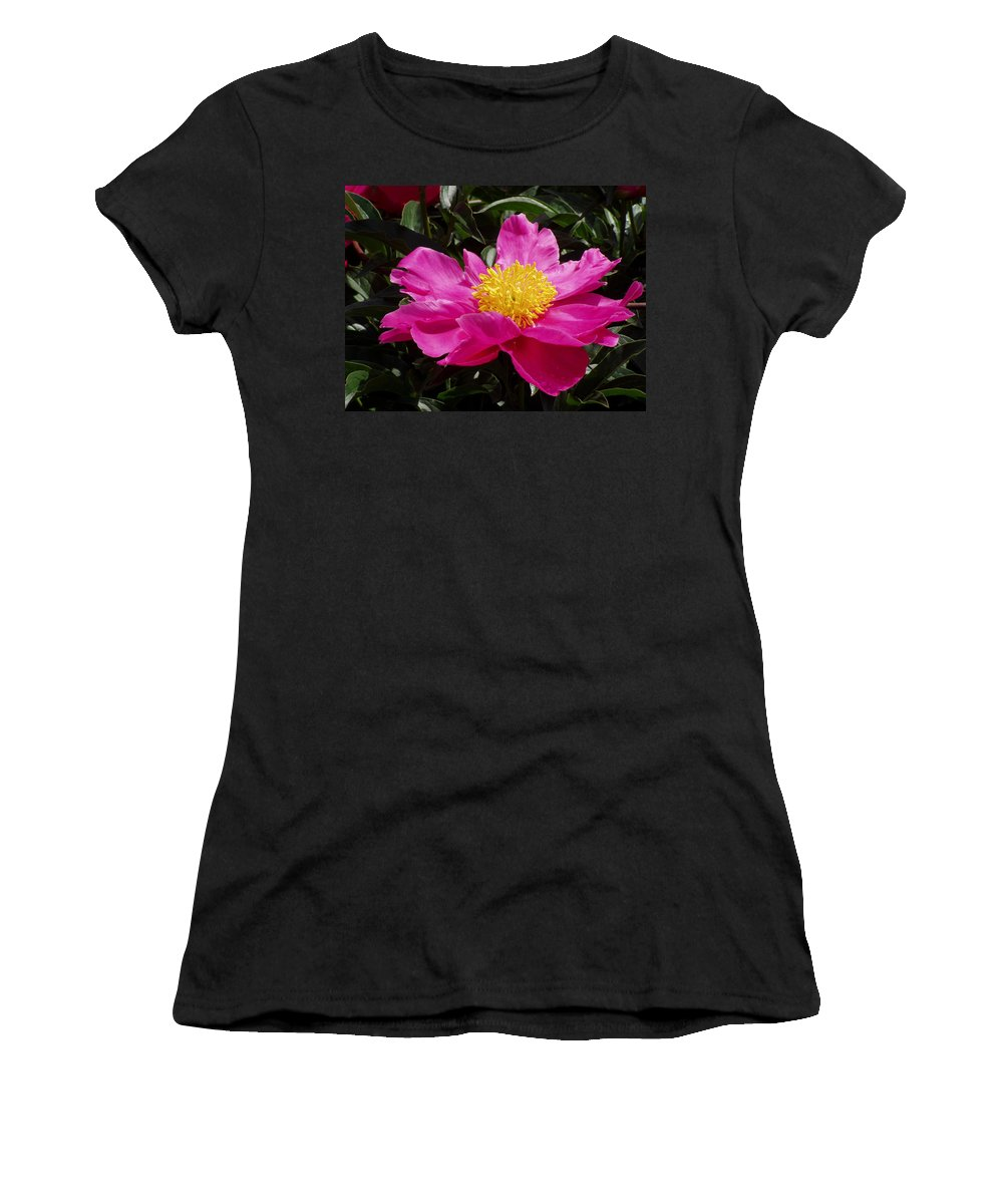 Rose Women's T-Shirt (Athletic Fit) featuring the photograph Unfolding by Ian MacDonald