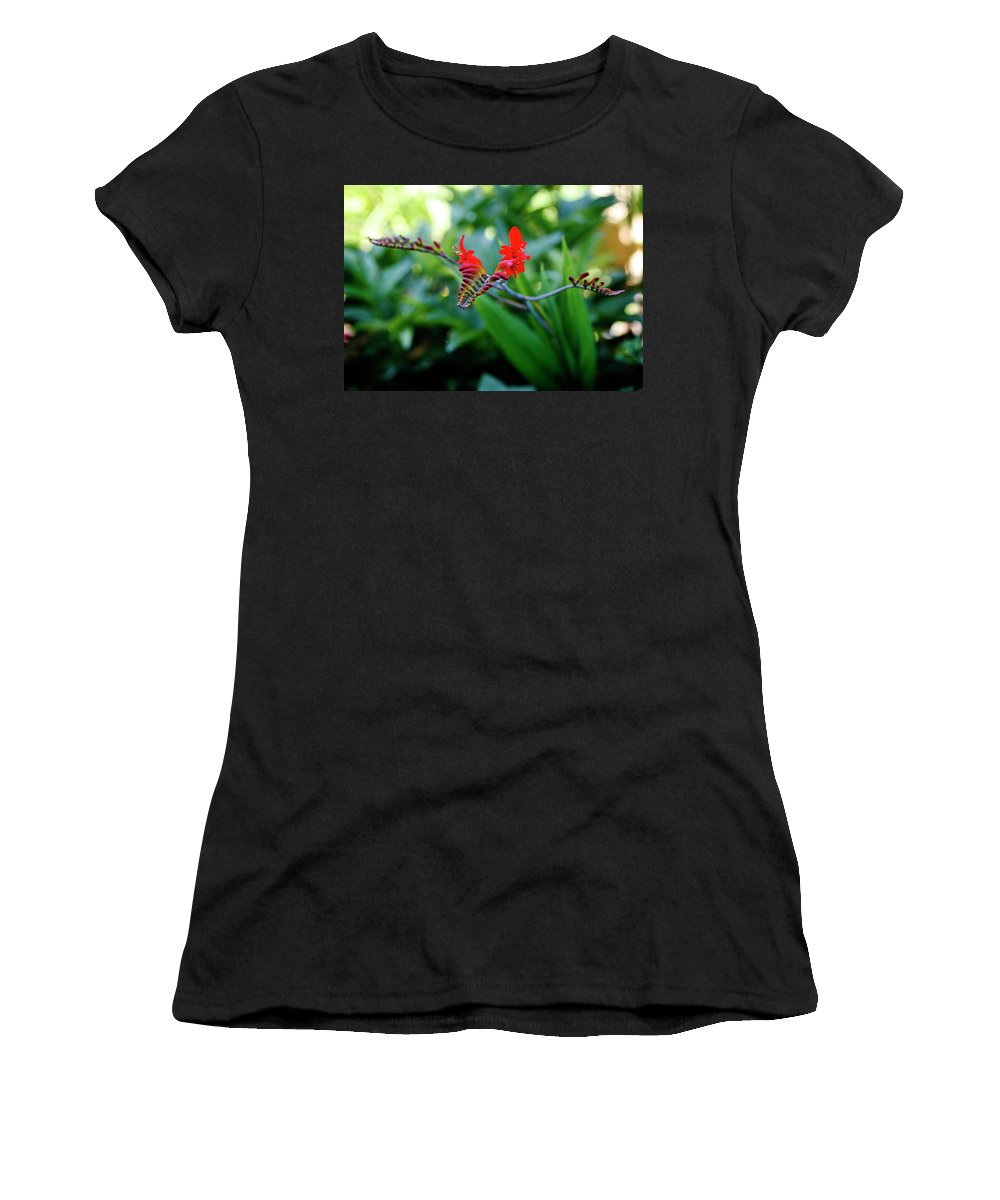 Unusual Women's T-Shirt (Athletic Fit) featuring the photograph Unusual Flower 1 by Marilyn Hunt