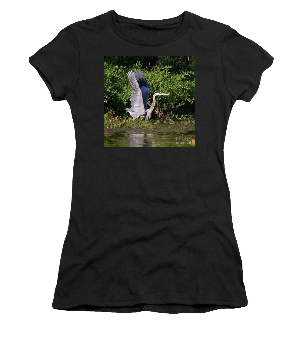Bird Of Prey Women's T-Shirt featuring the photograph Up And Out by Robert Pearson