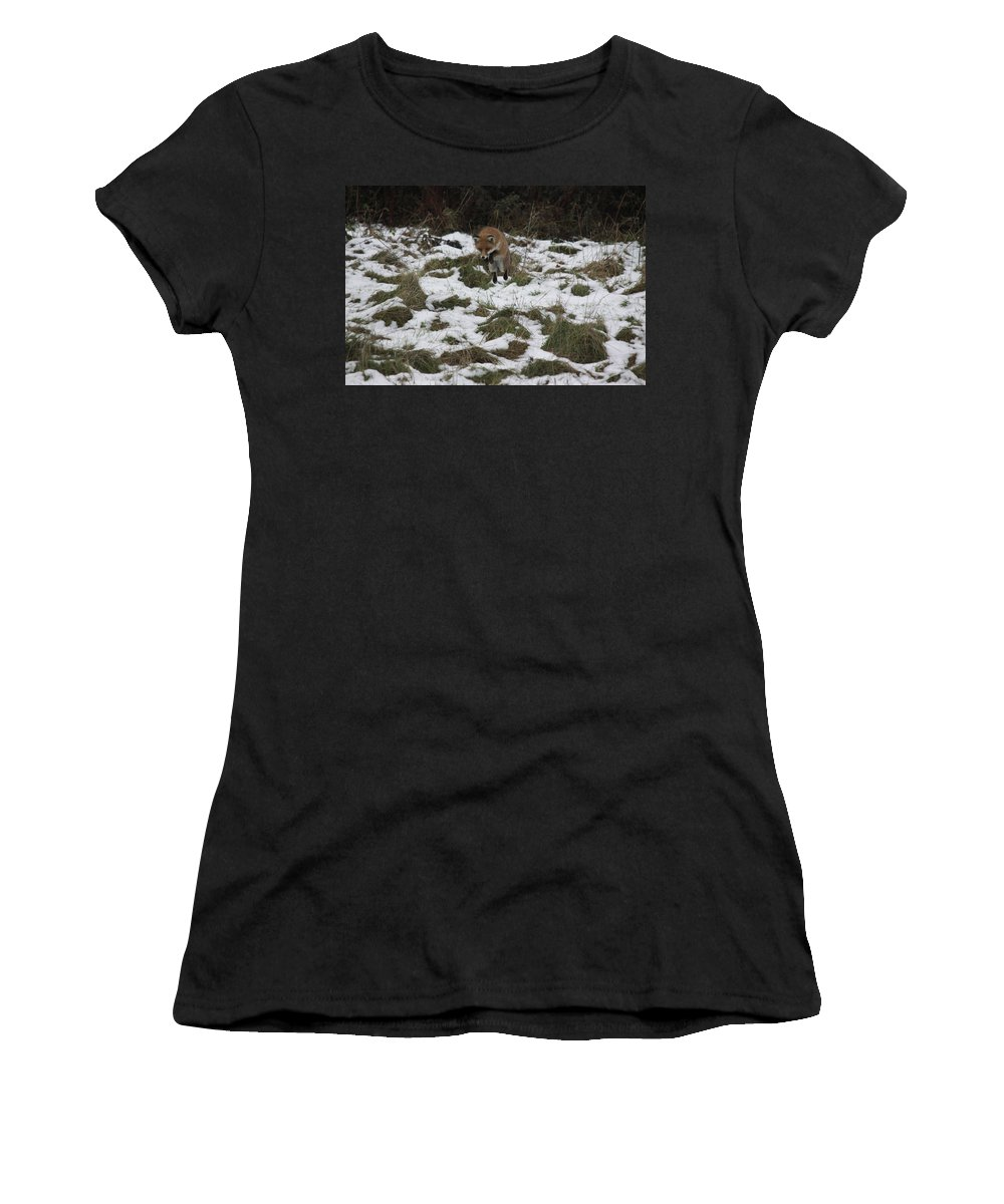 Fox Women's T-Shirt (Athletic Fit) featuring the photograph Up In The Air by Mark Braggins