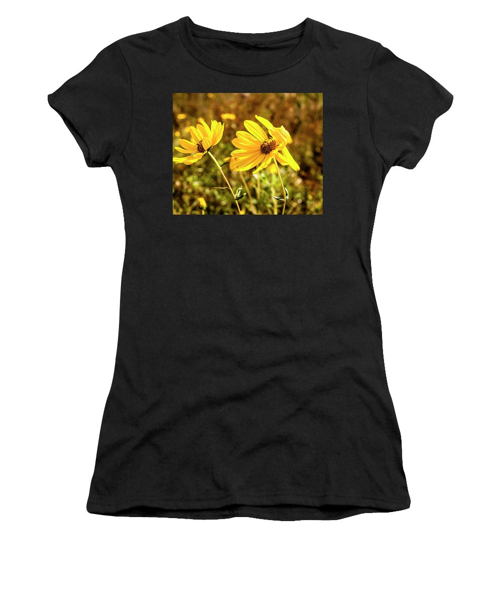 Sunflower Women's T-Shirt (Athletic Fit) featuring the photograph Variableleaf Sunflower by Norman Johnson