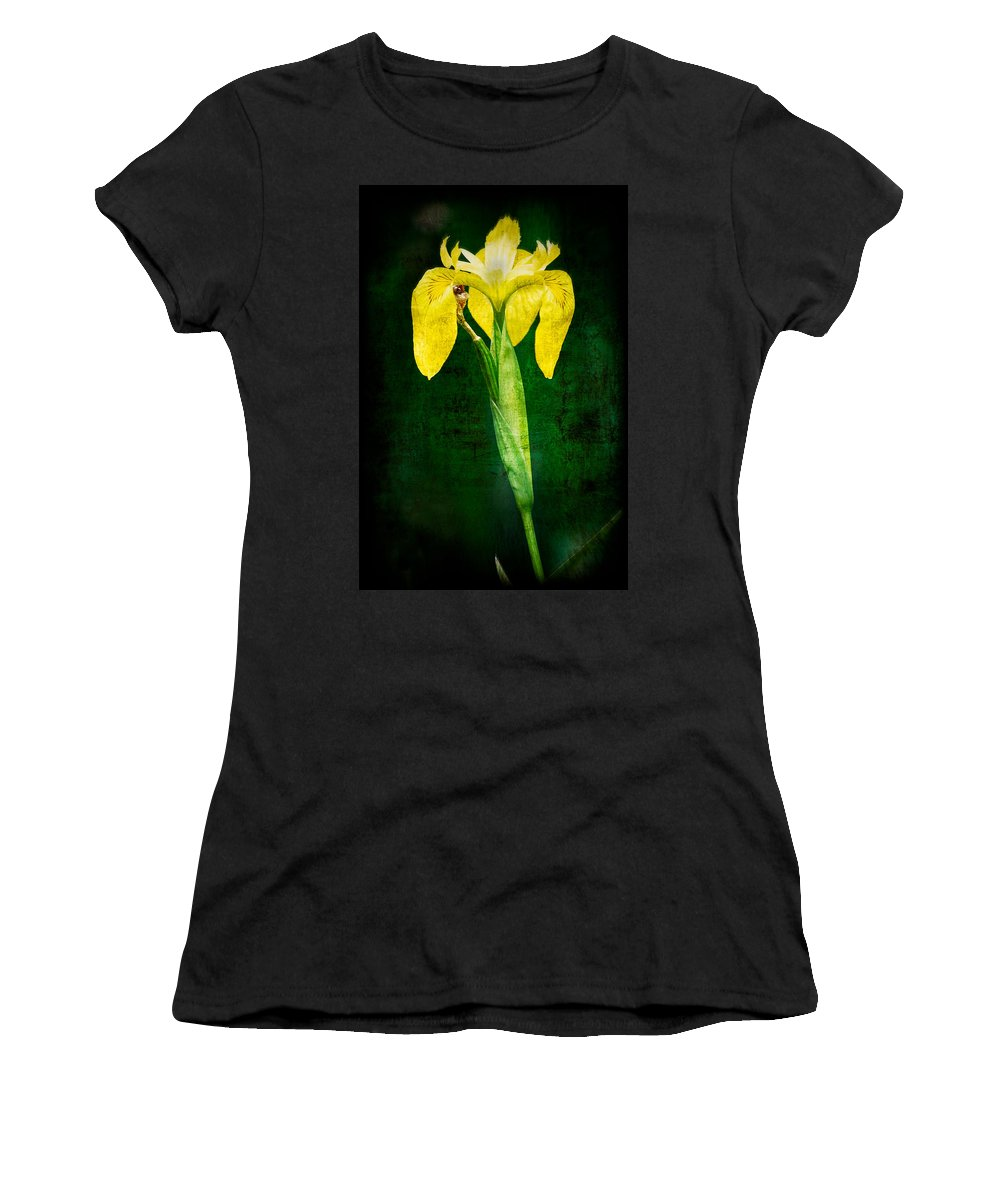 Vintage Women's T-Shirt (Athletic Fit) featuring the photograph Vintage Canna Lily by Rich Leighton