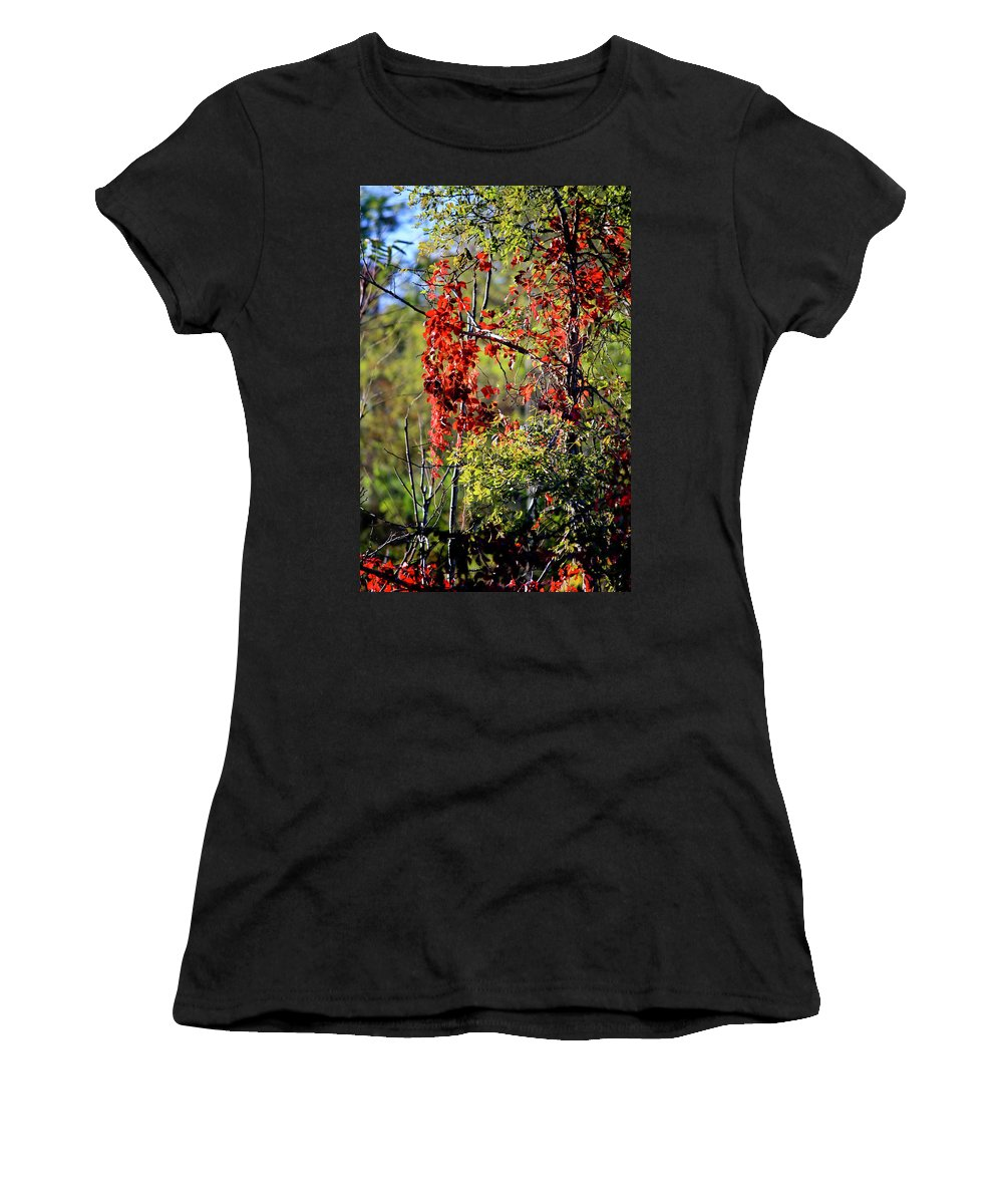 Virginia Women's T-Shirt featuring the photograph Virginia Creeper by Teresa Mucha