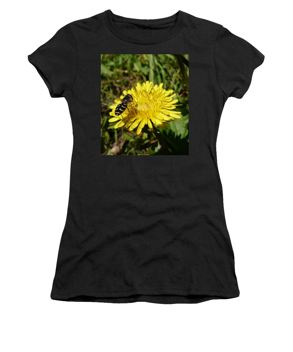 Wasp Women's T-Shirt featuring the photograph Wasp Visiting Dandelion by Valerie Ornstein