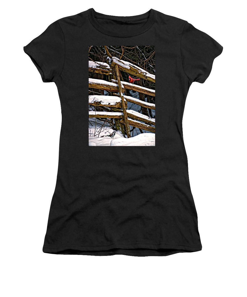 Winter Women's T-Shirt (Athletic Fit) featuring the photograph Watching You by Steve Harrington