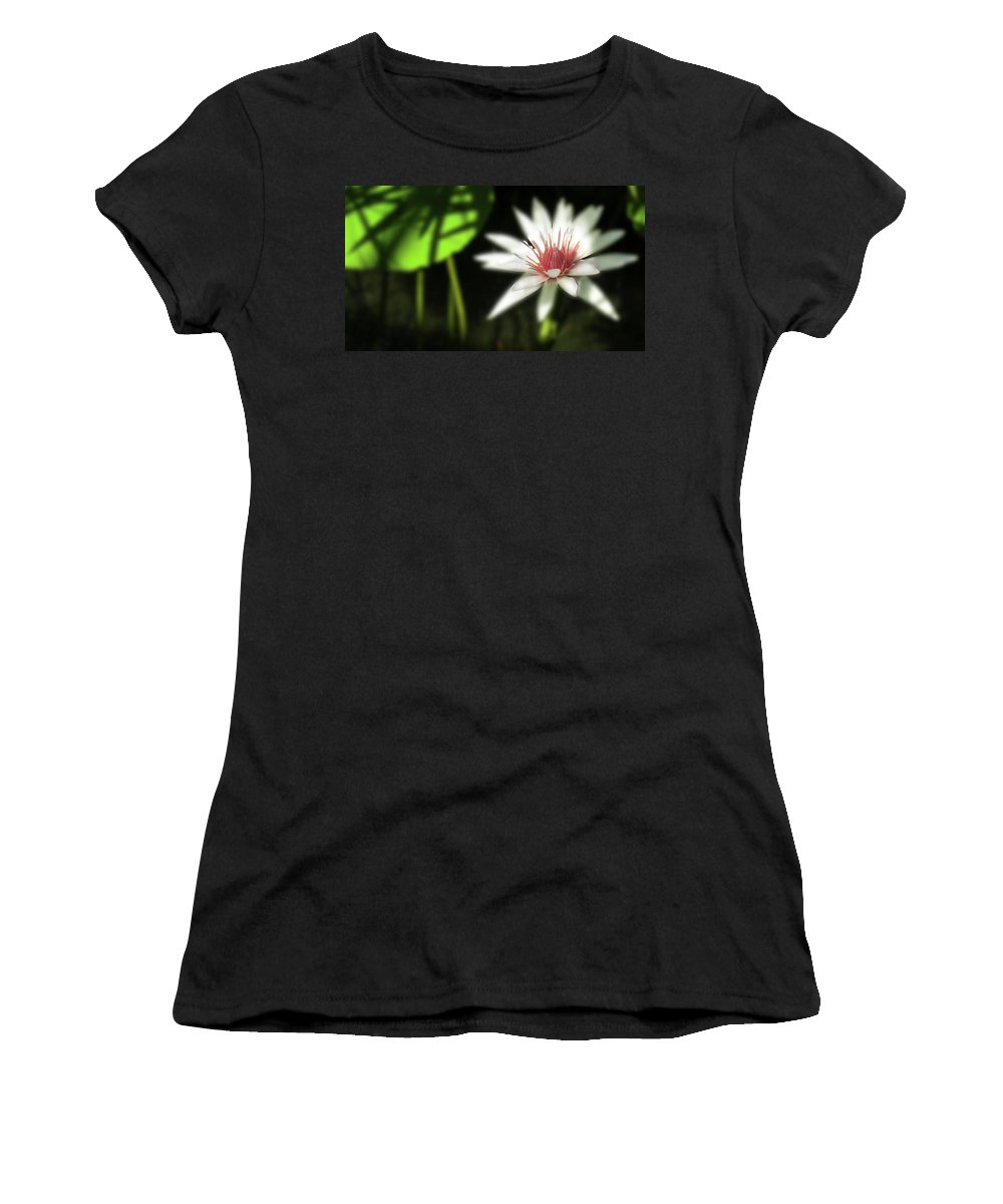 Water Women's T-Shirt featuring the photograph Water Lily by Shelley Neff