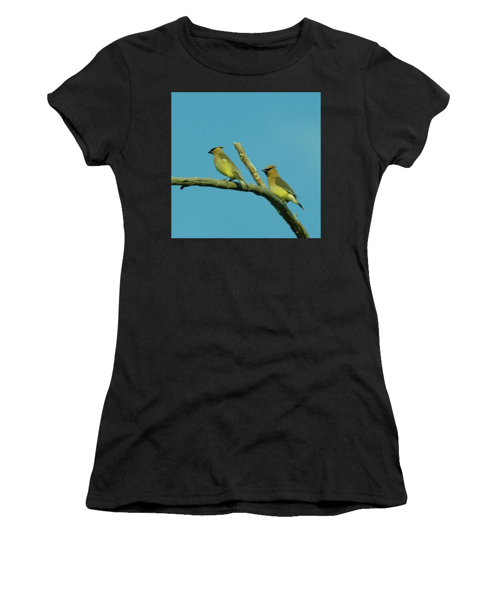 Birds Women's T-Shirt (Athletic Fit) featuring the photograph Wax Wings by Jeff Swan