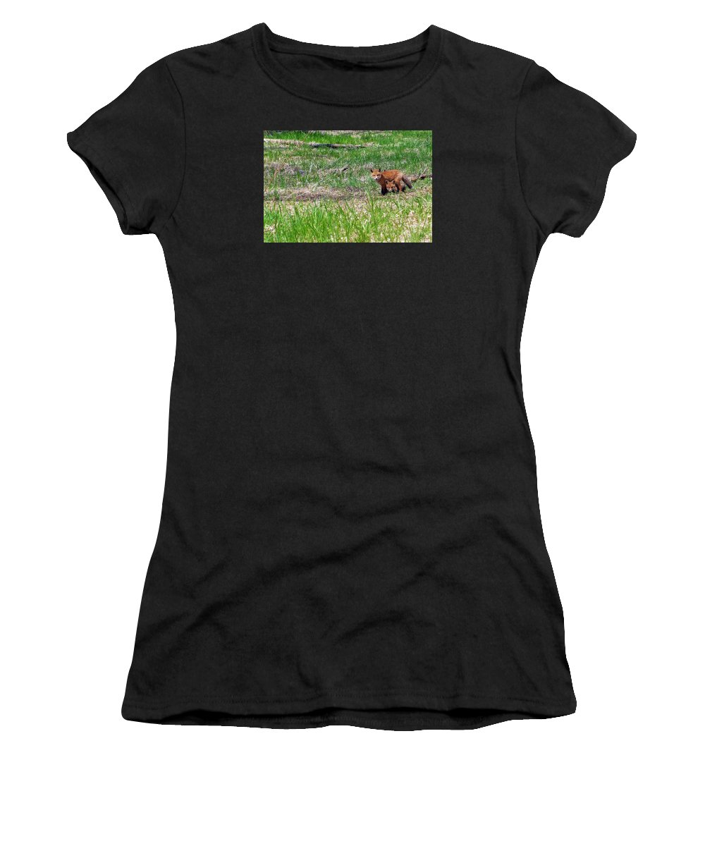 Red Fox Women's T-Shirt featuring the photograph We Are 3 Red Fox Puppies by Asbed Iskedjian