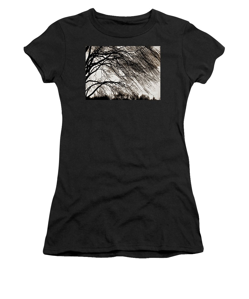 Weeping Willow Women's T-Shirt (Athletic Fit) featuring the photograph Weeping Willow Tree by Carol F Austin