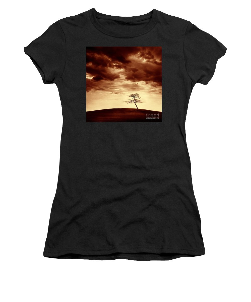 Tree Women's T-Shirt (Athletic Fit) featuring the photograph What Will Be The Legacy by Dana DiPasquale