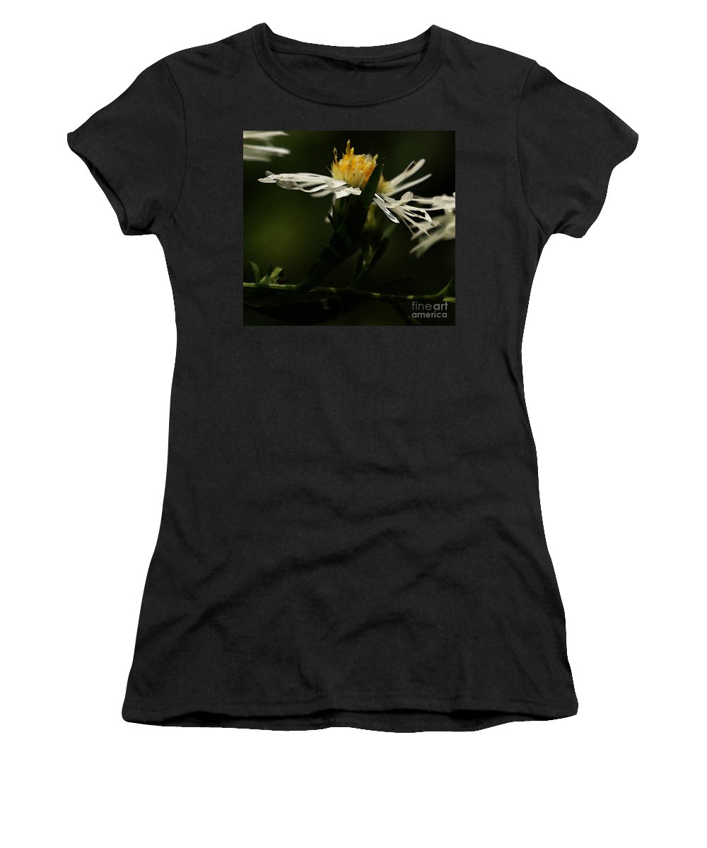 Aster Women's T-Shirt (Athletic Fit) featuring the photograph White Aster by Linda Shafer