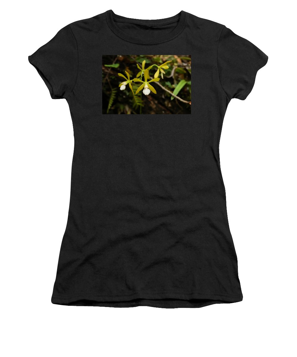 Orchid Women's T-Shirt (Athletic Fit) featuring the photograph White Butterfly Orchid by Rich Leighton