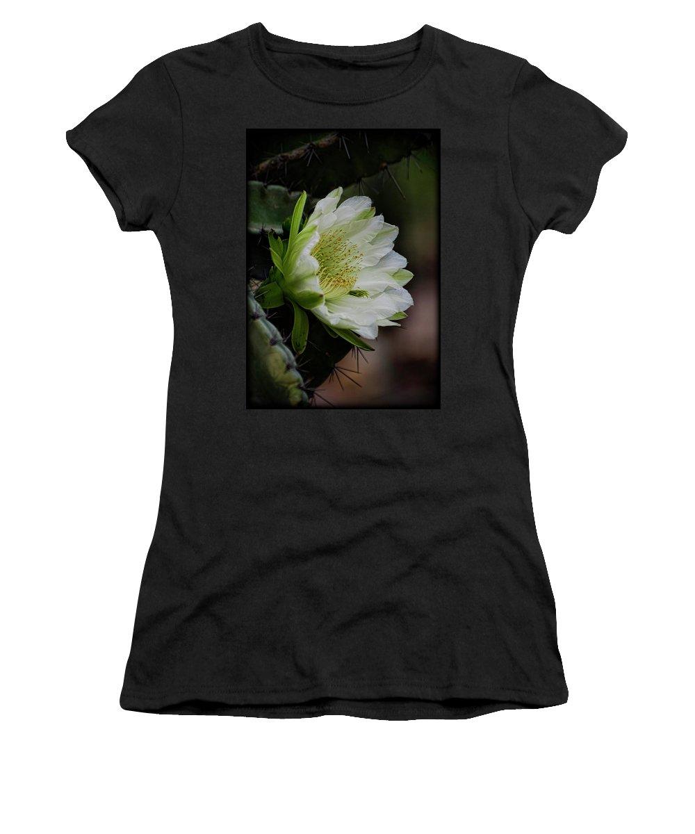 Echinopsis Women's T-Shirt featuring the photograph White Cactus Flower by Saija Lehtonen