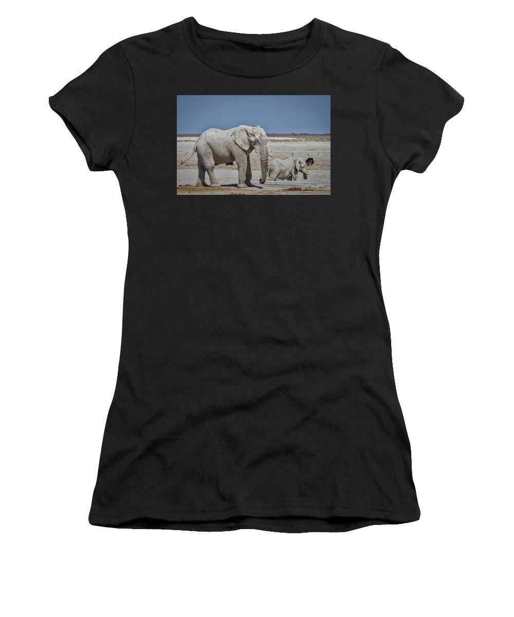 Elephant Women's T-Shirt featuring the photograph White Elephants by Ernie Echols