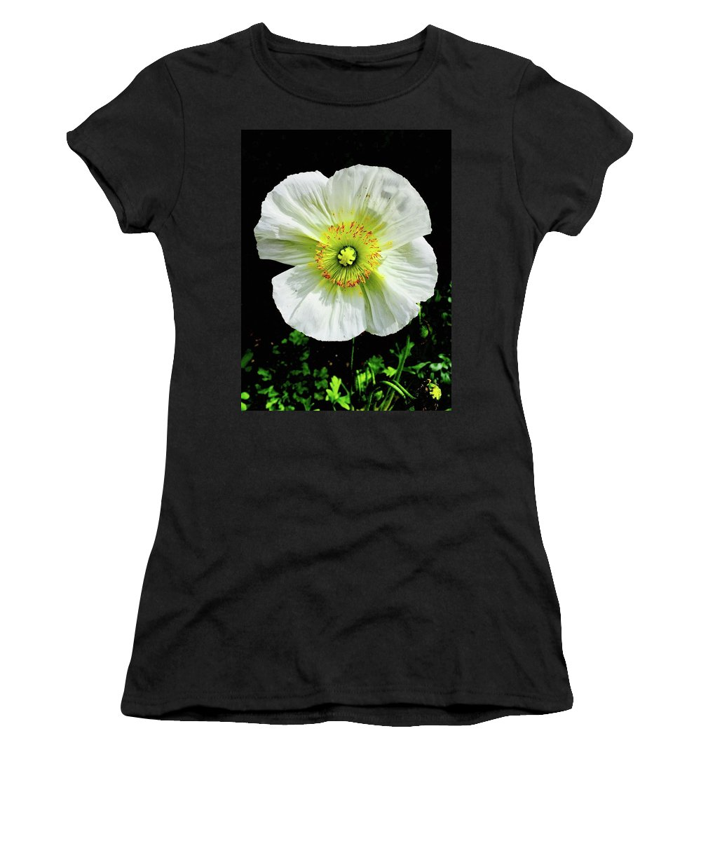 White Iceland Poppy Flower Bright Flora Temecula California Papaver Nudicaule Croceum Women's T-Shirt (Athletic Fit) featuring the photograph White Iceland Poppy by Russell Keating