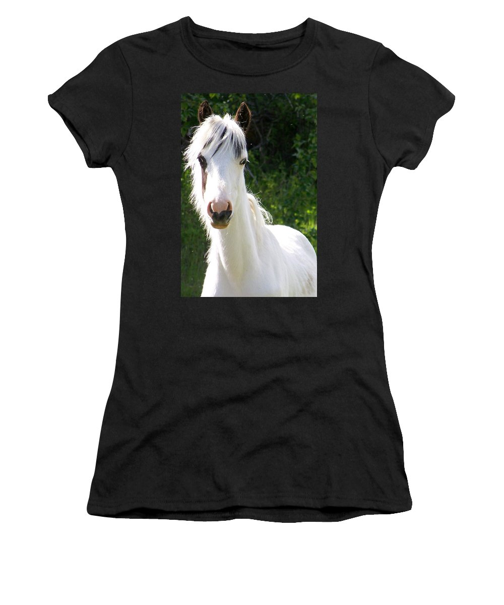 Curious Women's T-Shirt (Athletic Fit) featuring the photograph White Indian Pony by Greg Hammond
