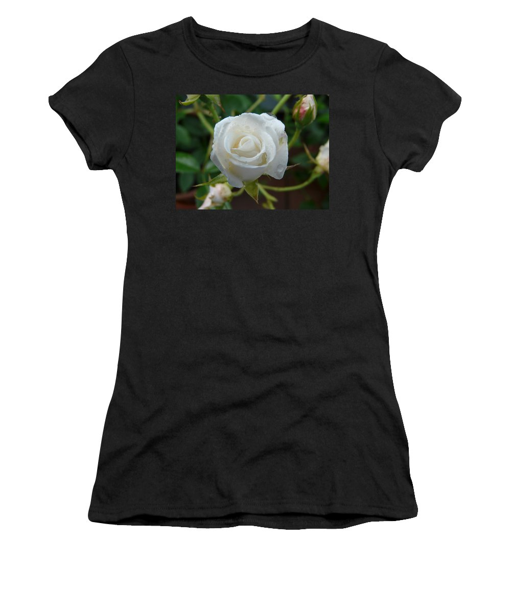 Rose Women's T-Shirt (Athletic Fit) featuring the photograph White Rose After Rain 2 by Valerie Ornstein