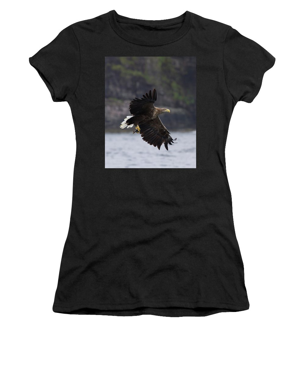 White-tailed Eagle Women's T-Shirt featuring the photograph White-tailed Eagle Against Cliffs by Peter Walkden