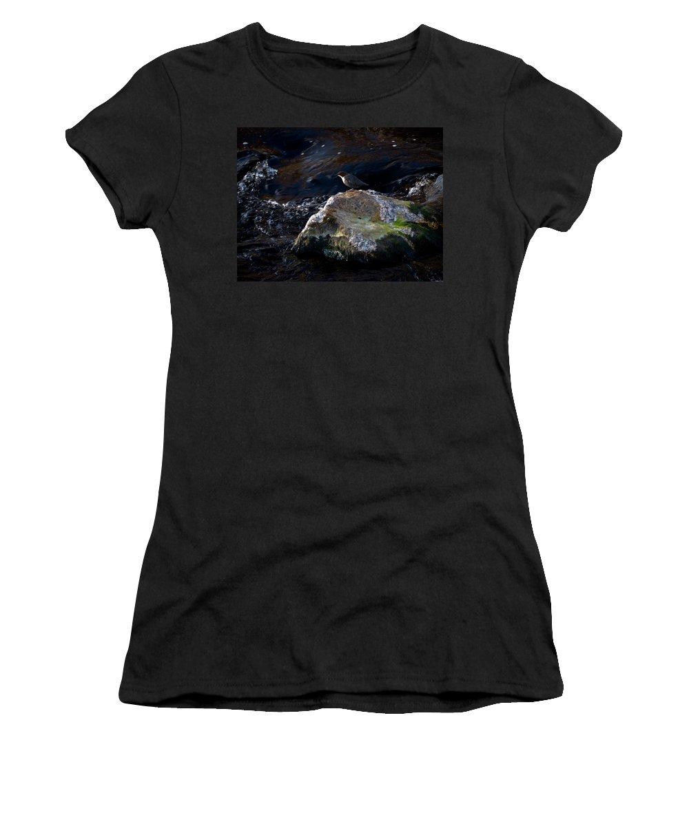 Lehtokukka Women's T-Shirt (Athletic Fit) featuring the photograph White-throated Dipper Nr 2 by Jouko Lehto