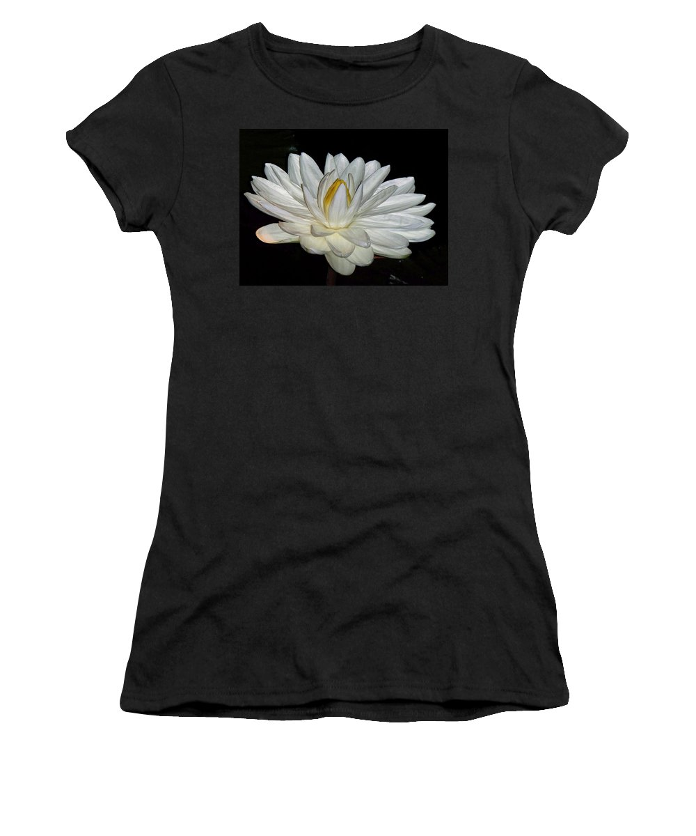 White Women's T-Shirt (Athletic Fit) featuring the painting White Water Lily by Eric Schiabor
