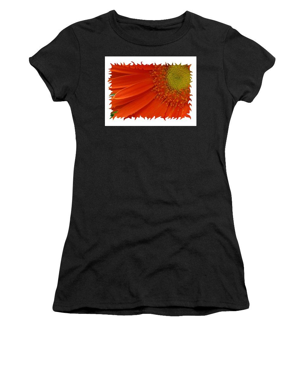 Gerber Daisy Orange Yellow Digital Art Photograph Photography Photographer Flower Plant Nature Women's T-Shirt (Athletic Fit) featuring the photograph Wild Daisy by Shari Jardina
