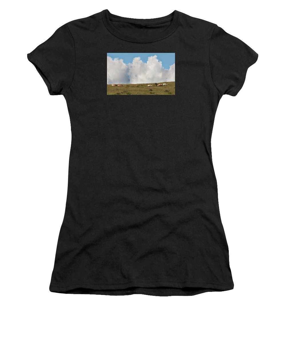 Asia Women's T-Shirt (Athletic Fit) featuring the photograph Wild Mongolian Horses by Alan Toepfer