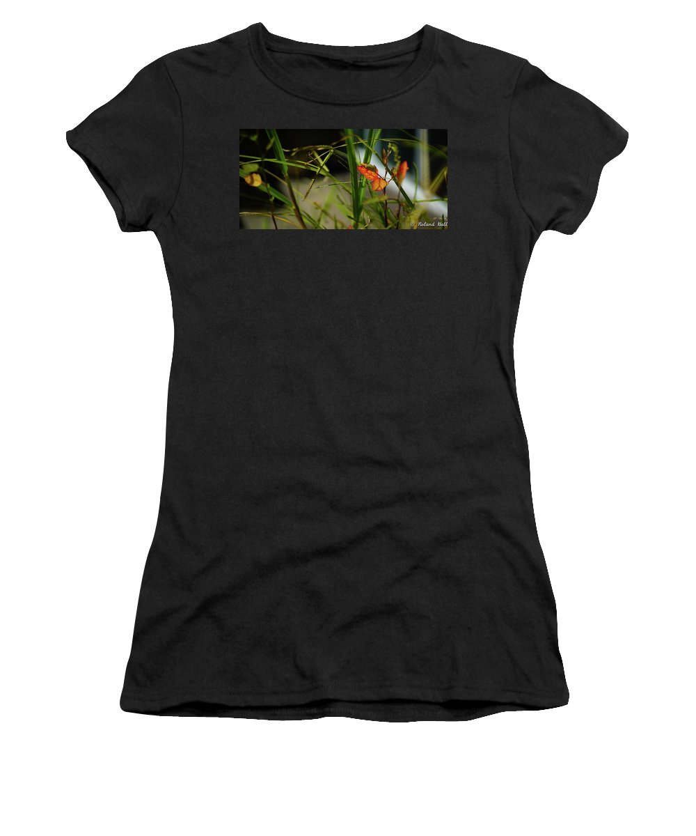 Wild Women's T-Shirt (Athletic Fit) featuring the photograph Wild Plants by Roland Hall