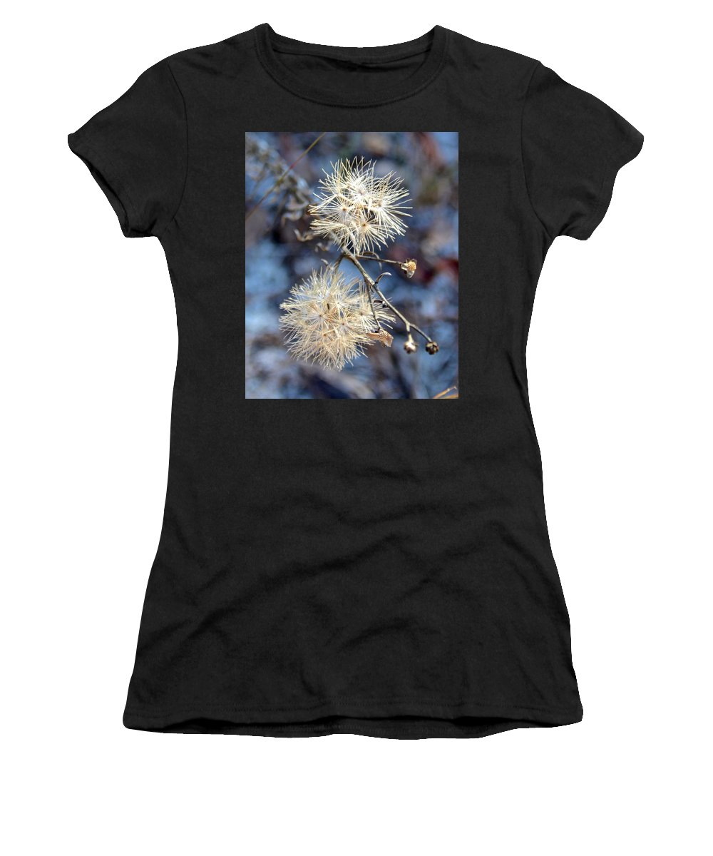 Flower Women's T-Shirt (Athletic Fit) featuring the photograph Wildflower by Carol Bradley